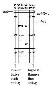 guitar fret diagram with natural notes labled